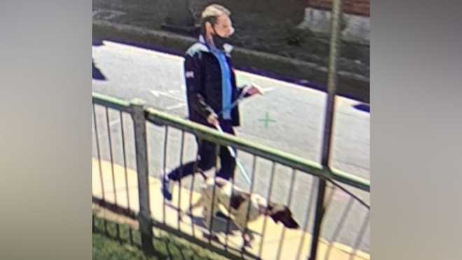 Police released a photo of this person, who is suspected of stealing the dog in this picture from a vehicle that was parked on Memorial Drive in Cambridge, Massachusetts on May 7, 2021.