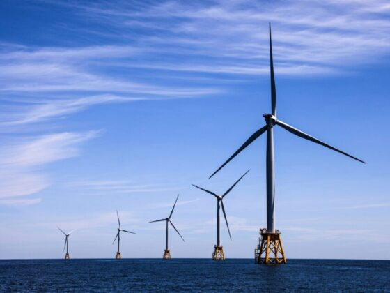 Donald Trump seems pretty unhappy about the newly approved wind project off Martha's Vineyard