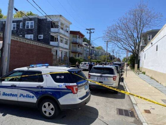 Police investigating after human remains found in Dorchester