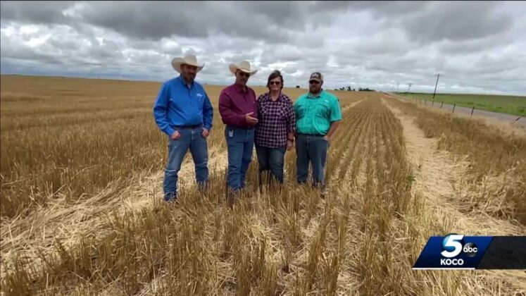 'We really could change the world': Agriculture revolution explores new approach to farming
