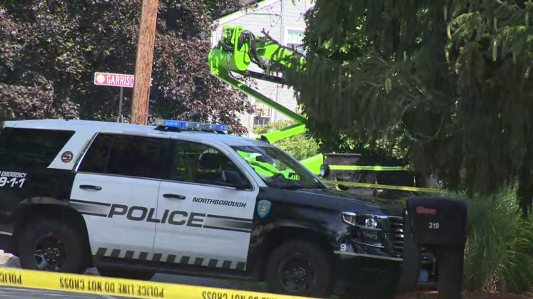 Officials investigating 'unattended death' involving tree crew in Northborough