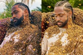 Big Sean Poses With 65,000 Bees Directly on Him for New Video