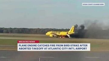Bird flies into plane engine, causes fire at New Jersey airport