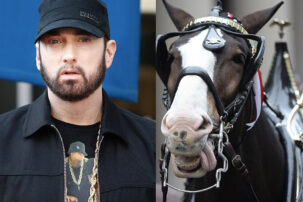 Budweiser Names New Baby Clydesdale Horse Eminem