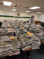 Florida sheriff's office looking to return $2 million worth of marijuana to rightful owner